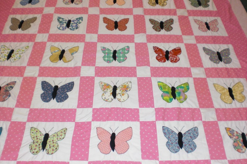 Lots of butterfly blocks