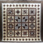 Mary's Star Sampler Quilt 1