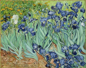 Van Gogh Irises